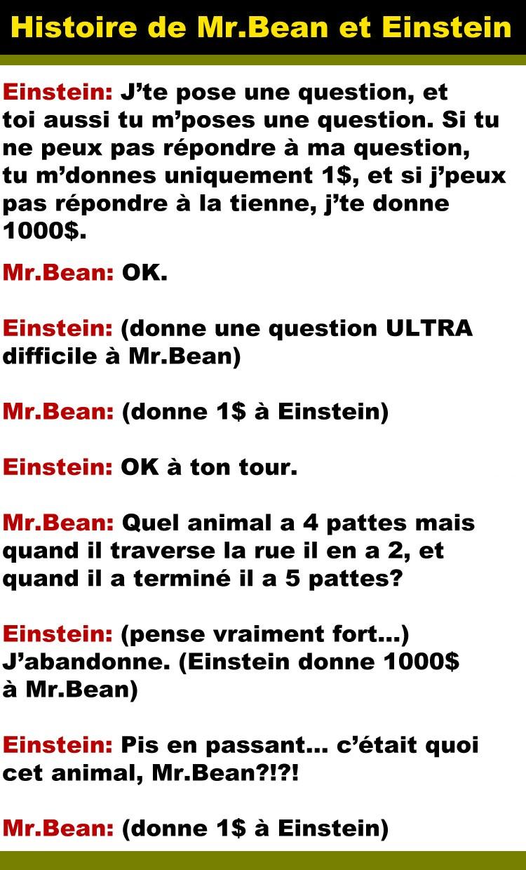 einstein-mr-bean